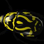 bug 34375 340